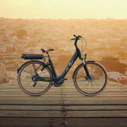 Bikes-with-bckgr-Swan-1